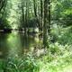 circuit GPS de rando, Vie et logis d'antan 5,8 km - Lignareix - Pays de Haute Corrèze :