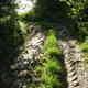 circuit GPS de rando,vtt,course à pied, Course à pied gps à Launaguet - Chemin du Poutou : Empreintes boueuses