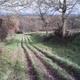 trail GPS : hike,running, Baba de Bazus à Paulhac : PIC00088