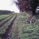 trail GPS : hike,running, Baba de Bazus à Paulhac : PIC00089