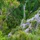 circuit GPS de rando, Gorges de Trévans - Estoublon : 04 - à pic au retour point 5.7km