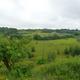 circuit GPS de rando,vtt,course à pied,cheval, Balade sur le terril reboisé du Perier-Chenoit à Souvret :