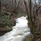 circuit GPS de rando, Balade autour de Ferrières sur Sichon : Ruisseau le Sichon