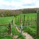 trail GPS : hike,outdoor bike, Balade dans la vallée de la Grande Honnelle :