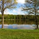 circuit GPS de rando, Forêt d'Allogny : L'étang