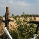 trail GPS : outdoor bike, Cinq Mars la Pile, Maziéres de Touraine, Langeais : Fotolia_988384