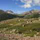 circuit GPS de rando, Lac Laramon et Lac du Serpent - Névache : Vue