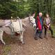 circuit GPS de rando, Trois jours sur la Régordane de Pradelles à Génolhac : L'âne Caramel