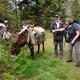 circuit GPS de rando, Trois jours sur la Régordane de Pradelles à Génolhac : Les ânes ont faim
