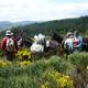 circuit GPS de rando, Trois jours sur la Régordane de Pradelles à Génolhac : Beaux panoramas