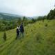 trail GPS : hike, The larris of Saint-Aubin-Rivière : Larris St Aubin rivière ©CDT Somme