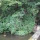 circuit GPS de rando, La Transcalestienne - de Mariembourg à Nismes : Résurgence eau noire