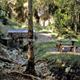 trail GPS : hike,outdoor bike, The source of the river Marne - Balesmes sur Marne : Source de la Marne