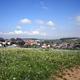 circuit GPS de rando, De St Pierre sur Vence à Champigneul sur Vence : Vue sur Champigneul