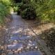 trail GPS : hike, Les chemins du