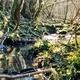 trail GPS : hike,outdoor bike, La Fontaine du Saut - Faverolles : Source de Vaubrien ©Office de Tourisme du Pays de Langres