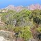 circuit GPS de rando, Capu Purcile - Bocca a Croce : Panorama entre le sud-sud-ouest et le nord-nord-est
