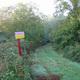 circuit GPS de rando,vtt,cheval, Tour de la forêt d'Araize – Martigné-Ferchaud : © RANDO ET NATURE