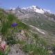 circuit GPS de rando, La crête des Gittes : Le Mont-Blanc vu depuis le sommet de la Crête des Gittes