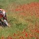 trail GPS : outdoor bike, Espace VTT FFC du Pays de St Flour – Circuit n° 7 - Le château d'Alleuze : © Damien Rosso - FOTOLIA_687446
