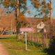 circuit GPS de rando, Entre bois de Juche-Pie et vignobles des Folies – Panzoult : © Office de Tourisme du Pays de Chinon - Flickr