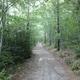 circuit GPS de rando, Du bois de Patou en passant par les pierres de faux – Pouchères  : Pallières