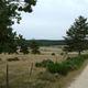circuit GPS de rando, Saugues - Le Sauvage - Chemin de Compostelle : Le Sauvage