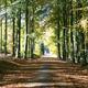trail GPS : outdoor bike, Circuit VTT des Cantons de l'Est - Champs et Haies :