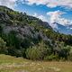 circuit GPS de rando, Le sentier de genévriers thurifères, Saint-Crépin : À travers les prés des Guions ©sentier-nature.com