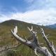 circuit GPS de rando, La Guardiole de l'Alp - crête du Mourre Froid - Molines-en-Queyras :