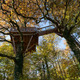 circuit GPS de rando, Forêt de Signy-l'Abbaye - Signy-l'Abbaye : Cabane dans les arbres