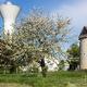 circuit GPS de rando,vtt, A la découverte des moulins à vents - Pont l'Abbé d'Arnoult : Moulin à Pont-l'Abbé-d'Arnoult © www.vacances-charente-maritime.fr