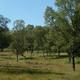 circuit GPS de rando, La maison forestière de Ternell :