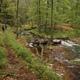 trail GPS : hike, Les Fagnes du Nord :