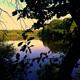circuit GPS de vtt, Les deux feux (n°8) – Saint-Saulge : Etang des merles  © tejo ringers - Panoramio