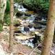 circuit GPS de vtt, Périasse, la vallée du Sapey - La Loge des Gardes : 5_Torrent du Sapey