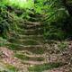 circuit GPS de rando, Circuit Le Vieux Moulin – Mirandol-Bourgnounac  : Vieilles marches de Mirandol le Vieux © simbert - Panoramio