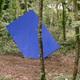 circuit GPS de rando,vtt,cheval, Vent des Forêts - Circuit des Trois Fontaines - Fresnes-au-Mont  : Les cent ciels plantés - Denis Malbos © CDT de la Meuse
