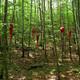 circuit GPS de rando,vtt,cheval, Vent des Forêts - Circuit des Trois Fontaines - Fresnes-au-Mont  : Figura translata © Bruno Lion - CDT de la Meuse