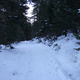 circuit GPS de rando, Cirque de Chamalière : En sous bois après chamalière