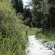 circuit GPS de rando, Le marais des lèches – Ceignes : Le marais des lèches © Ain Tourisme