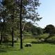 circuit GPS de rando, Le marais des lèches – Ceignes : Le marais des lèches ©  klv01 - Panoramio