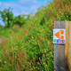 trail GPS : outdoor bike, La balade Roullotine -  Roullours : © OT Bocage Normand