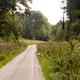 circuit GPS de rando, Sentierdu Camp du Drap d'Or – Campagne-lès-Guînes : Parking Bois De Guines © Christophe Dufossé