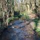 circuit GPS de rando, Le circuit pédestre les Villages - Saint-Herblain : Les ruisseaux du Drill et de l'Oréviére © Saint-Herblain