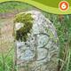 circuit GPS de rando, Circuit des Bornes - Viterne  :  © C C Moselle-et-madon