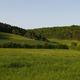 circuit GPS de rando, Circuit du Bois de Gravelon - Longchamp-sur-Aujon :