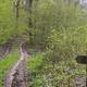circuit GPS de rando, Circuit du Bois de Gravelon - Longchamp-sur-Aujon : © LE GITE CHEZ JO