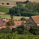 circuit GPS de rando, Le circuit des Grands Crus – Marlenheim : Dahlenheim en Alsace © Les circuits de Bacchus