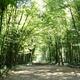 circuit GPS de rando, Le sentier de Pirouette : Forêt d'Andigny ©SMPT